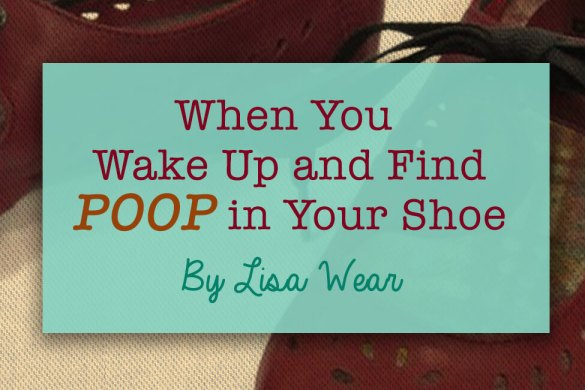 poop in your shoe