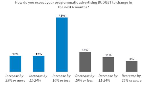 Programmatic advertising budget