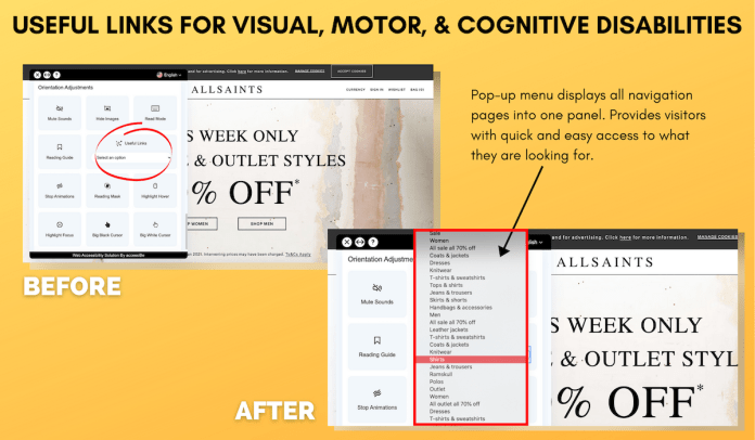 Useful Links for Visual Disabilities Example