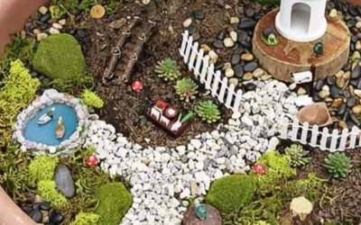 Brooklands Dunmurry create an enchanted garden! (July, 2020)