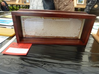 Frame of honey for extracting