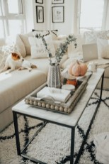 Marvelous Glass Coffee Tables Ideas For Living Room 47