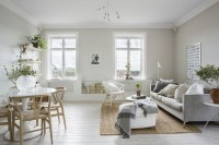Hottest Scandinavian Design Ideas For Apartment 47