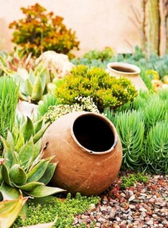 Awesome Succulent Garden Ideas In Your Backyard 13