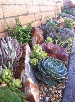 Awesome Succulent Garden Ideas In Your Backyard 16