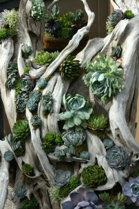 Awesome Succulent Garden Ideas In Your Backyard 45