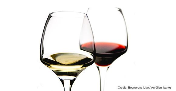 verre à vin blanc vs rouge