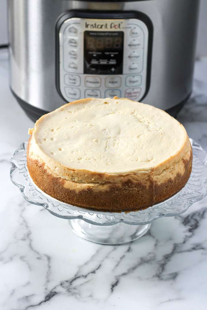 plain cheesecake on a glass stand and a pressure cooker in the background.