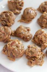 pecan pralines on a white plate.