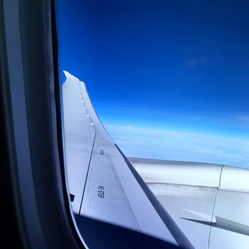 jal-japan-airlines-business-class-review-skysuite-skytrax-winner-blue-sky