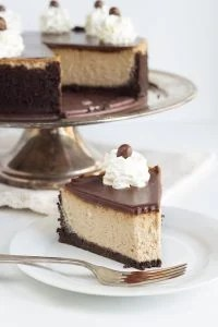 Mocha Cheesecake with Boozy Mocha Ganache - Chocolate and coffee come together in this cheesecake and ganache. There's a kick of coffee liqueur in the ganache too! If you're an iced coffee lover, you'll love this cheesecake.