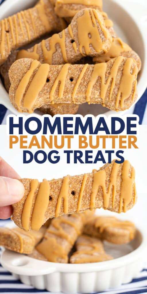 collage of photos for pinterest showing the dog treats with text in the middle