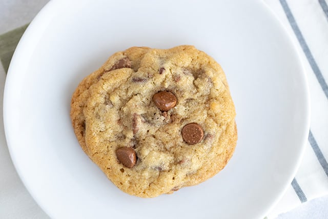 a single chocolate chip cookie freshly baked on a white dessert plate
