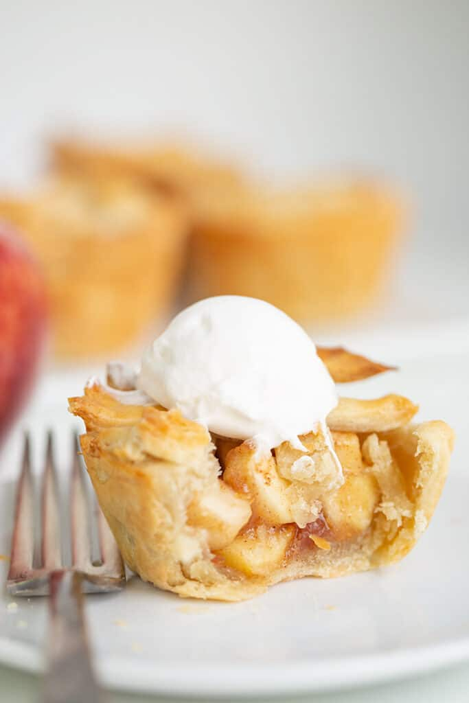 mini pie on a plate with a fork