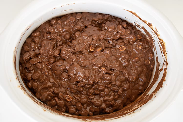 mixture completely melted in the crockpot