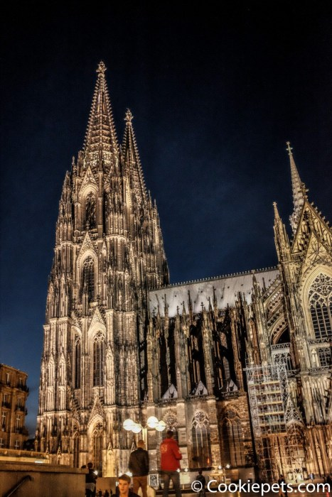 Cologne Cathedral (night view)