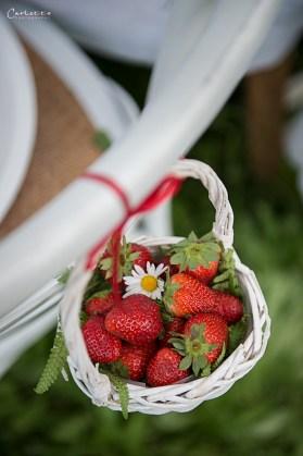 Erdbeerzeit - Erdbeere und Holunder