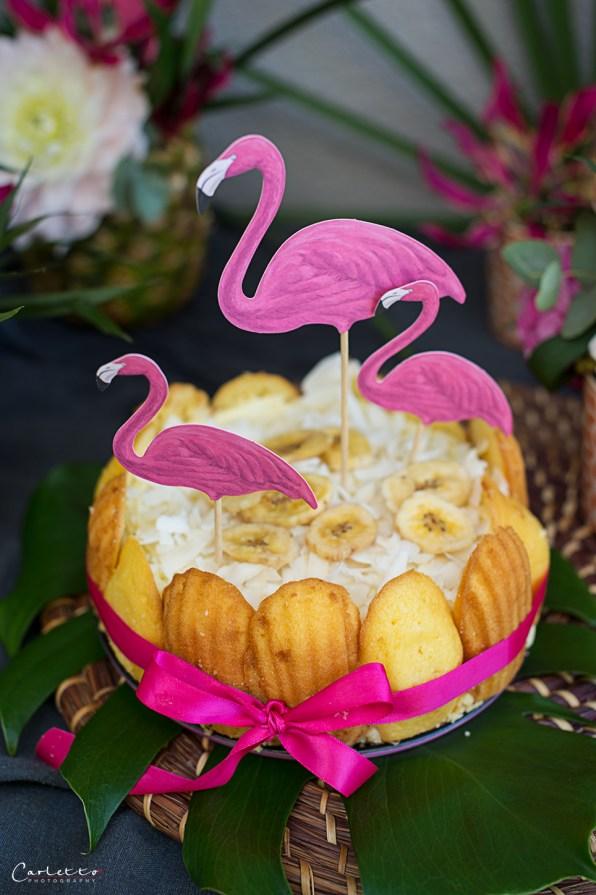 Kokos Charlotte mit Mango Topfencreme