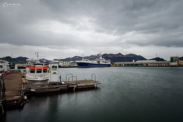 Island Vesturhorn_7780
