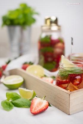 Erdbeer Basilikum Magarita_6910