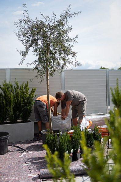 Arbeiten am Terassengarten