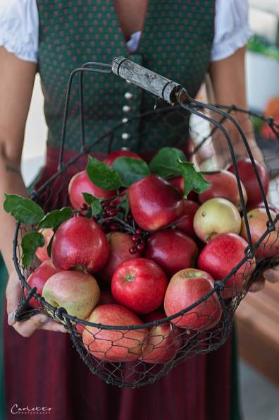 Apfelernte Rezepte_7659