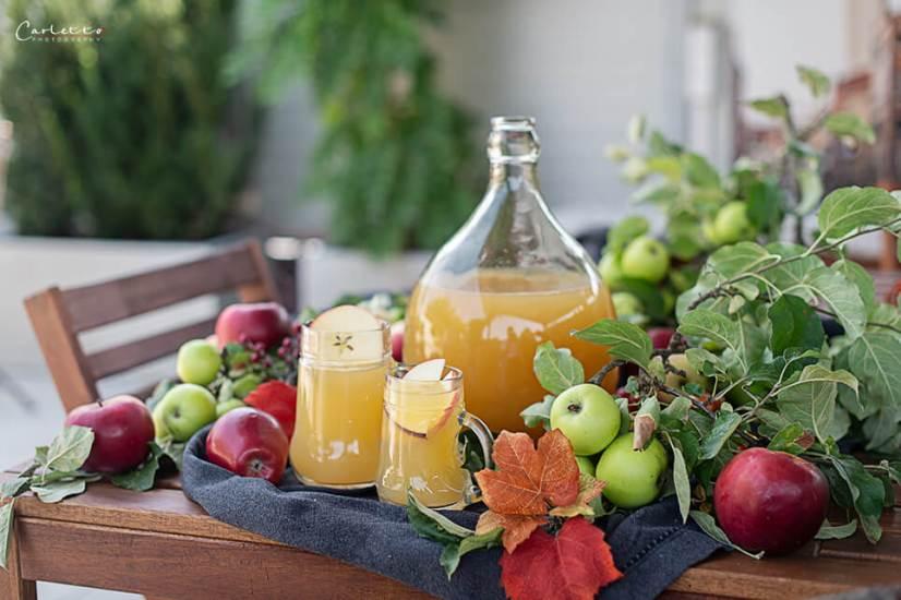 Apfelsaft selber machen_7984