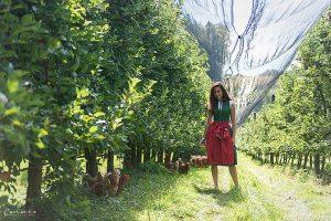 Bio Äpfel Steiermark