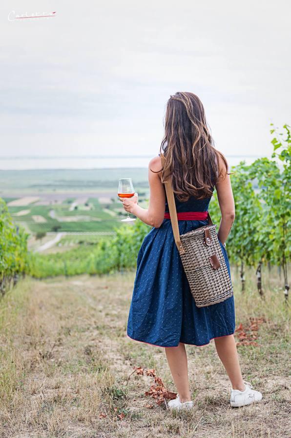 Burgenland Wein Birgit Braunstein_1197