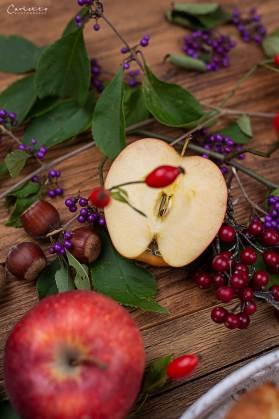 Germteigschnecken mit Apfel Zimt Fülle_4071