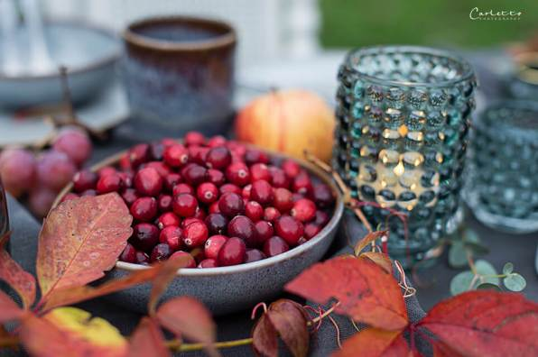 Herbst Brunch_9089