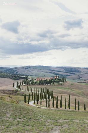 Italien Toskana_1416