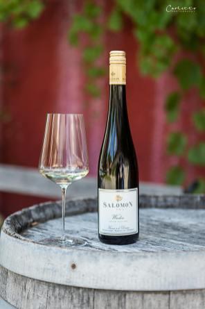Niederösterreich Weingut Salomon_2637