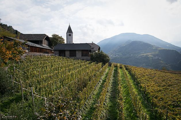 Südtirol Loaker_1519