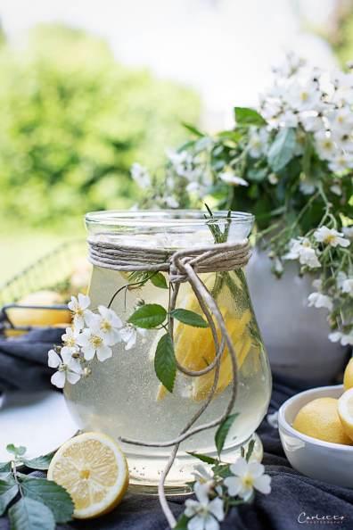 Gartenshooting Zitronen Bowle mit Rosmarin_7905