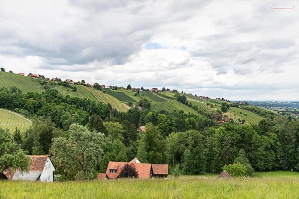Steiermark Hiden_5330