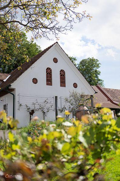 Steiermark Scharl_4484