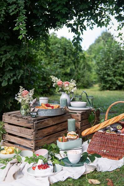 Picknick Früchte Tarte_7282