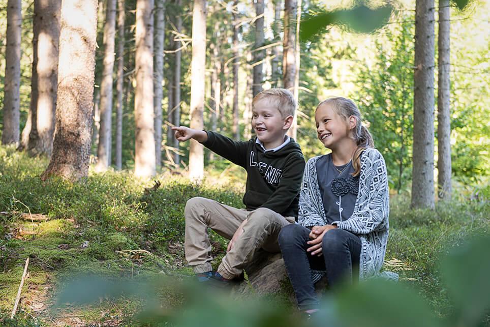 Herbstpicknick im Wald_4508