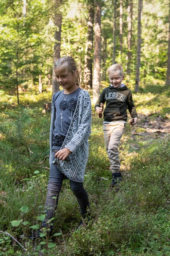Herbstpicknick im Wald_4529