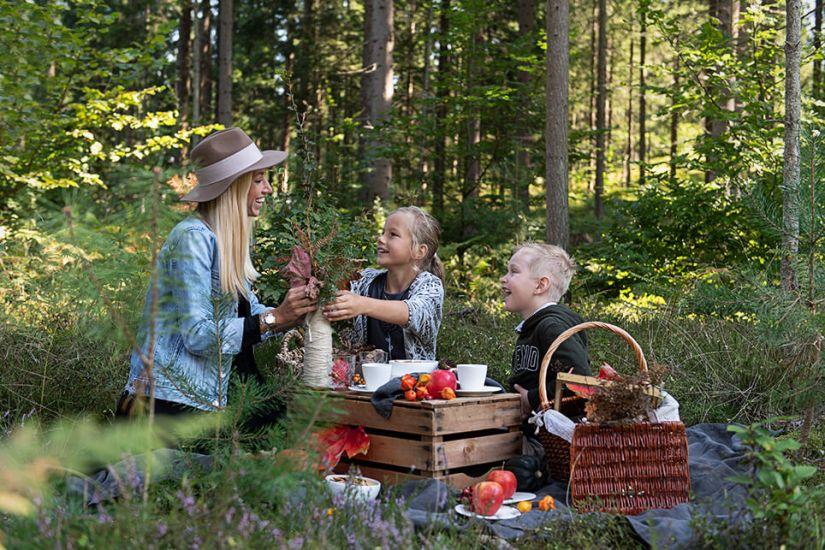 Herbstpicknick im Wald_4755