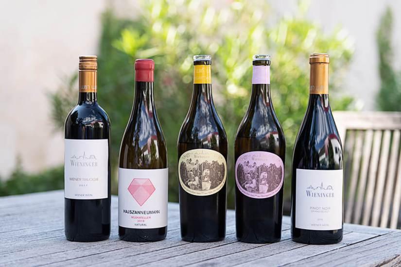Österreich Wein Wieninger_2075