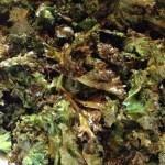 Kale Chips – CookingCoOp.com