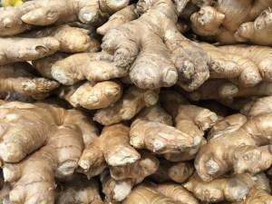 Ginger - CookingCoOp.com