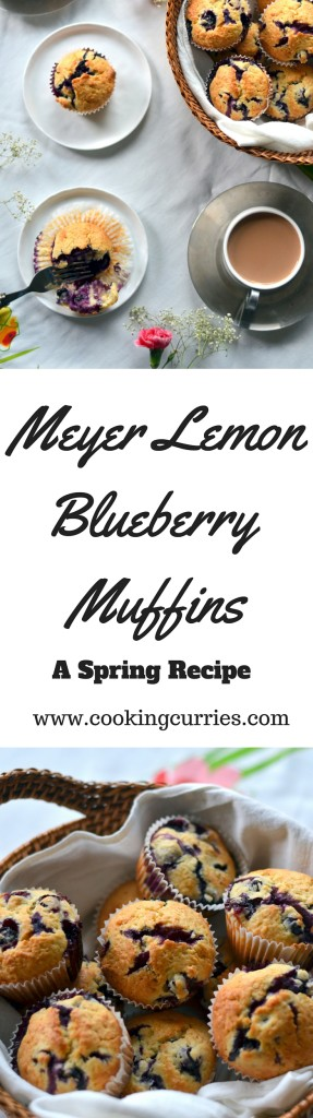 Meyer Lemon Blueberry Muffins - A Spring Recipe - Breakfast Brunch - www.cookingcurries.com