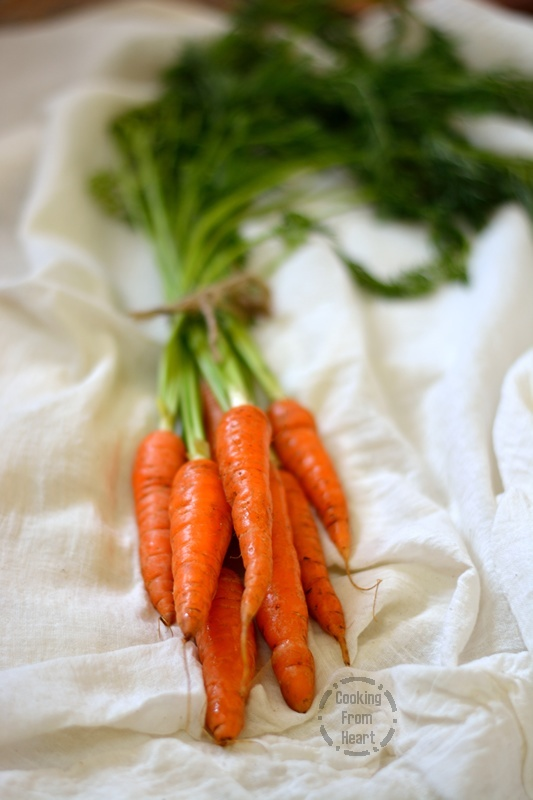 Fresh Carrots.jpg