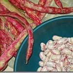 Complete Guide to Cooking Dried Beans from Scratch