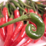 Spicy Green Schug with Chili Peppers and Coriander
