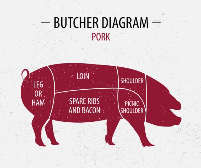 loin: the loin roast comes from the area of the pig between the shoulder  and the beginning of the leg  it is sold either bone-in or deboned
