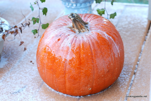 iced pumpkin (6)